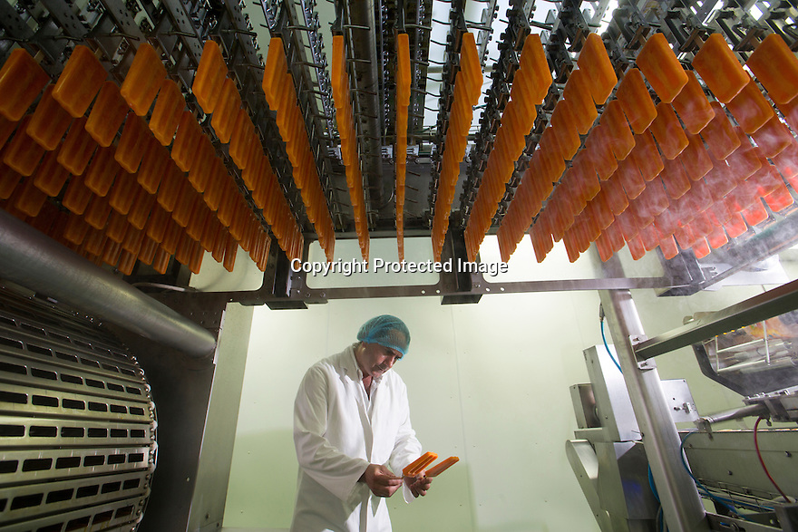 """19/06/16<br /> <br /> Frozen lollies pass over, director, Pasquale Tanzarella's head.<br /> <br /> """"The last couple of days have sent the factory into meltdown,"""" exclaimed Pasquale Tanzarella, director of one of the UK's largest independent ice-lolly manufacturers.<br /> <br /> In fact, today alone, his factory will make more than 200,000 ice lollies, which will be sold up and down the country through traditional ice-cream vans and shops. <br /> <br /> Demand has been so high because of the recent hot spell that the cold rooms at Franco's ices, in Kempston, Bedfordshire, are already full to bursting, with more than 40 different varieties of ice-cream and ice-lollies, and today's production of Tasty Orange lollies will probably be on sale by late afternoon.<br /> <br /> The lollies start life in a huge 2,000-litre vat, as a syrupy, bright orange liquid, before being poured into the traditional ice-lolly moulds.<br /> <br /> From there they are passed over a fast-freezer, at around -36C, to super cool the liquid into ice, which only takes around 20 minutes, before being loaded into their colourful outer wrapper.<br /> <br /> And then it's straight into wholesale boxes, stored in the factory's cold rooms, and sold the very same day.<br /> <br /> It's a super success story for this family-run business, which was founded in1964 by Pasquale's father, Domenico Tanzarella, originally to sell ice-creams through a local chain of vans.<br /> <br /> """"In the 70s we used to only supply vans within about a 60-mile radius of the factory,"""" said Pasquale.<br /> <br /> """"But we've grown steadily over the years and now we export to Cyprus, Ireland and even South Africa, as well as being one of the biggest suppliers here in the UK.<br /> <br /> """"Our best seller by far is the Mr Bubble ice-lolly,"""" said Pasquale. """"We were the very first company to launch a bubble gum flavoured lolly and it's been our best seller ever since.""""<br /> <br /> Last year they sold more than five million of the br"""