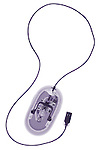 X-ray image of a computer mouse with cable (purple on white) by Jim Wehtje, specialist in x-ray art and design images.