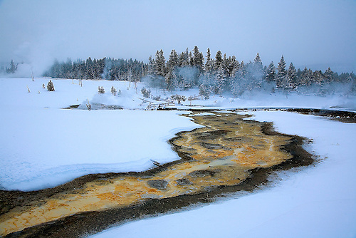 RUNOFF FROM THE SAWMILL GEYSER PRODUCES BRILLIANT COLORS FROM BACTERIA,MICROORGANISMS AND THERMOPHILES DURING WINTER AT YELLOWSTONE NATIONAL PARK,WYOMING