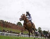 June 10th 2017, Chester Racecourse, Cheshire, England; Chester Races Horse racing Adam McNamara onboard Quayside runs to finish third in the Halewood Wines & Spirits Auction Stakes