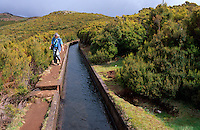Portugal, Madeira, Levada bei Rabacal