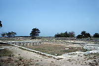 Italy: Paestum--Gymnasium, Swimming Pool (was under a roof). 1st C. B.C.- 2nd C. A. D.  Enlargements, improvements. Photo '83.