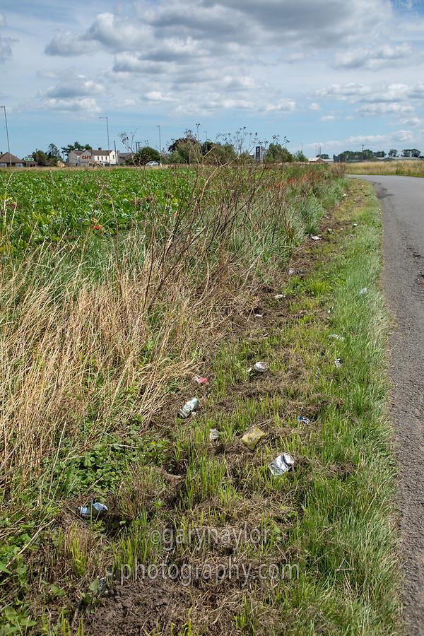 Roadside litter choppded with a grass mower