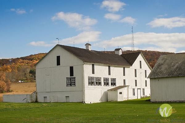 White barn. Route 118 near Hughesville, PA.