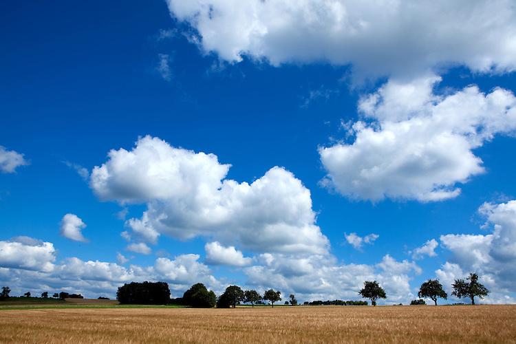 Europa, DEU, Deutschland, Baden-Wuerttemberg, Odenwald, Waldbrunn, Agrarlandschaft. Sommer, Wolken, Cumuluswolken, Kategorien und Themen, Natur, Umwelt, Landschaft, Jahreszeiten, Stimmungen, Landschaftsfotografie, Landschaften, Landschaftsphoto, Landschaftsphotographie, Wetter, Himmel, Wolken, Wolkenkunde, Wetterbeobachtung, Wetterelemente, Wetterlage, Wetterkunde, Witterung, Witterungsbedingungen, Wettererscheinungen, Meteorologie, Bauernregeln, Wettervorhersage, Wolkenfotografie, Wetterphaenomene, Wolkenklassifikation, Wolkenbilder, Wolkenfoto....[Fuer die Nutzung gelten die jeweils gueltigen Allgemeinen Liefer-und Geschaeftsbedingungen. Nutzung nur gegen Verwendungsmeldung und Nachweis. Download der AGB unter http://www.image-box.com oder werden auf Anfrage zugesendet. Freigabe ist vorher erforderlich. Jede Nutzung des Fotos ist honorarpflichtig gemaess derzeit gueltiger MFM Liste - Kontakt, Uwe Schmid-Fotografie, Duisburg, Tel. (+49).2065.677997, archiv@image-box.com, www.image-box.com]