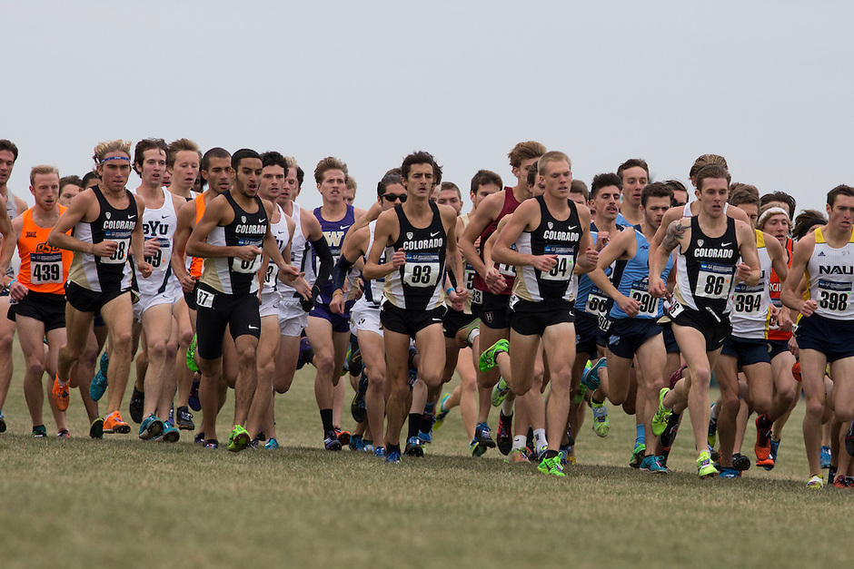Colorado runs with the pack at the start of the race during the NCAA Cross Country Championships in Terre Haute, Ind. on Saturday, Nov. 22, 2014. (James Brosher, Special to the Denver Post)