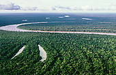 Tefe River, Amazon Basin, Brazil. Floodplain development with oxbow lakes showing the migration of the river course.