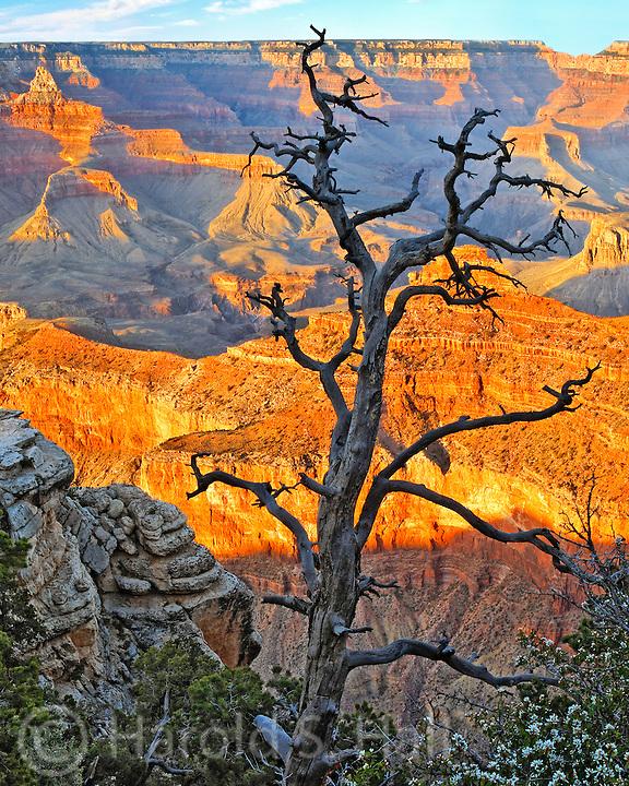 Grand Canyon Arizona at sunset.