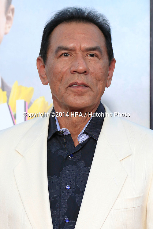 """LOS ANGELES - MAY 15:  Wes Studi at the """"A Million Ways To Die In The West"""" World Premiere at Village Theater on May 15, 2014 in Westwood, CA"""