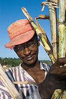 Dominikanische Republik, Zuckerrohrernte bei San Rafael del Yuma durch haitianische Gastarbeiter
