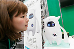 An exhibitor gives a demonstration of robot Musio X during SoftBank Robot World 2017 on November 21, 2017, Tokyo, Japan. SoftBank Robotics organized SoftBank Robot World 2017 to introduce AI (Artificial Intelligence) and IoT (the Internet of Things) companies developing the latest technology for robots, including applications its humanoid robot Pepper in various business fields. The robot expo runs until November 22. (Photo by Rodrigo Reyes Marin/AFLO)