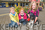 Family Fun Day : Enjoying the family fun day in aid of the Donal & Darren Foundation in The Square in Listowel on Sunday last were in  Billy, Jane & Kerrie Houlihan, Listowel and their dog Maddy.