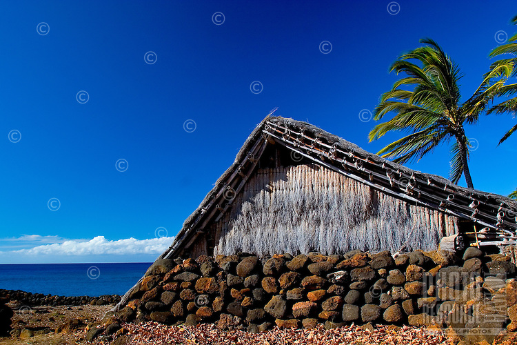 Hawaiian home replica on shoreline at ancient Hawaiian village with palms at Lapakahi State Historical Park, Big Island of Hawaii