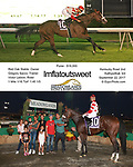 2017 Meadowlands Thoroughbreds