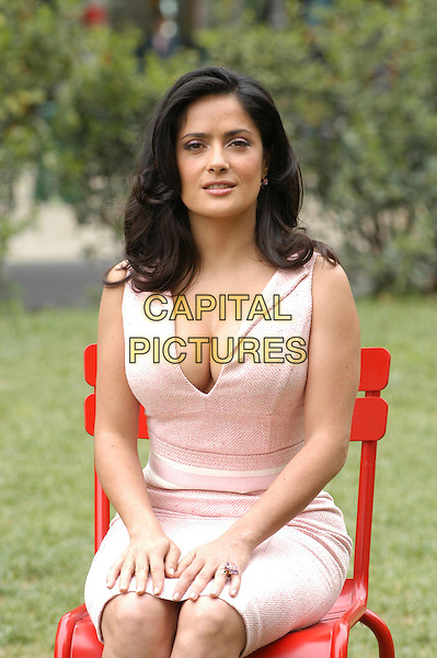 "SALMA HAYEK.Photocall for ""Ask The Dust"" at Casa Del Cinema, Rome, Italy..April 26th, 2006.Ref: CAV.half length dress sitting pink cleavage.www.capitalpictures.com.sales@capitalpictures.com.© Capital Pictures."