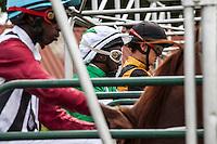 Jockeys James  Muhindi, Charles Mwangi and Lesley Serombe in the starting gates at Ngong racecourse in Nairobi, Kenya. March 17, 2013 Photo: Brendan Bannon