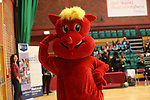 Northern Cup Final<br /> Wales v Scotland<br /> 27.02.14<br /> <br /> &copy;Steve Pope-SPORTINGWALES