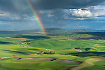 The Palouse, Whitman County, Washington: Dramatic rain clouds and rainbow over the rolling wheat fileds of the Palouse