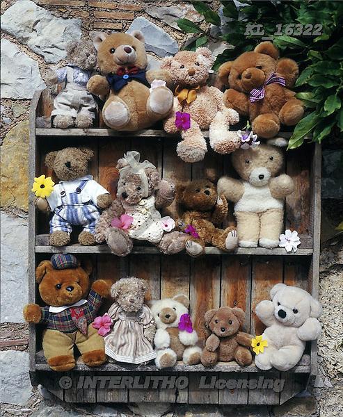 Interlitho, Alberto, REALISTIC ANIMALS, teddies, paintings, bears, bookcase, KL16322,#A#