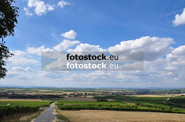 Blick vom Hornberg (273,3, m) auf Framersheim und das Rheinhessische Hügelland