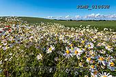 Marek, LANDSCAPES, LANDSCHAFTEN, PAISAJES, photos+++++,PLMP01063W,#L#, EVERYDAY