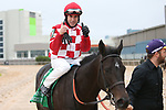 March 14, 2020: Serengeti Empress (5) with jockey Joseph Talamo aboard after winning the Azeri Stakes at Oaklawn Racing Casino Resort in Hot Springs, Arkansas on March 14, 2020. Justin Manning/Eclipse Sportswire/CSM