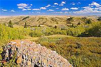 Conglomerate cliffs<br /> Cypress Hills Provincial Park<br /> Saskatchewan<br /> Canada