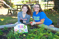 Katie christ,'20, and Calissa Silva,'20, weed the herb garden at the Methodist Community Gardens in Middletown while taking part in the Salve Regina Service Plunge.
