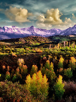 Fall colored aspens with clouds. Uncompahgre National Forest, Colorado.