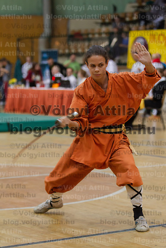 3rd International Chan Wu, Traditional Kung Fu and Wu Shu Championships in Budapest, Hungary on November 24, 2012. ATTILA VOLGYI