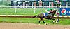 Groundsfordivorce winning at Delaware Park on 5/20/13