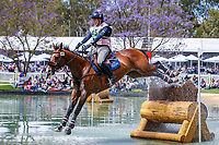 AUS-Tegan Ashby rides Waitangi Password during the Cross Country for the Horseland CCI3*-L. 2019 AUS-Mitsubishi Motors Australian International 3 Day Event. Victoria Park. Adelaide. South Australia. Saturday 16 November. Copyright Photo: Libby Law Photography