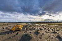 Yellow tents along the Ahnewetut creek in the Great Kobuk Sand Dunes, Kobuk Valley National Park, Arctic, Alaska.