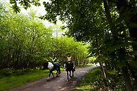 Horse riders near Pooh Bridge, Ashdown Forest, Sussex, UK, May 19, 2017. Picturesque Ashdown Forest stretches across the countries of Surrey, Sussex and Kent, and is the largest open access space in the South East of England. It is famous as the geographical inspiration for the Winnie the Pooh stories and is popular with fans of the characters.