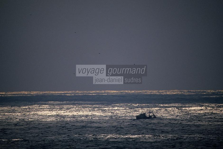 Europe/France/Bretagne/56/Morbihan/Belle-île: Bateau de pêche au large