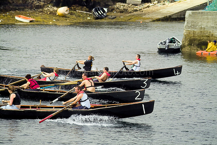 Currach racing in Roundstone Harbour, during the Roundstone Regatta July 2004