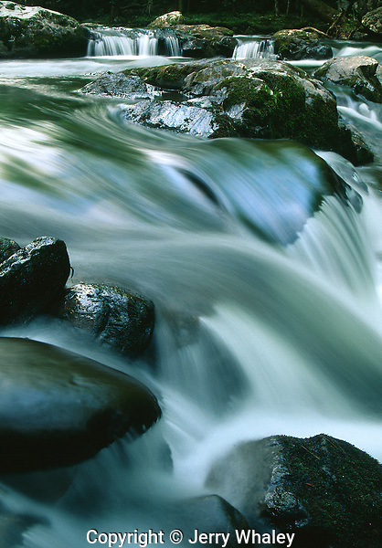 Little River, Tremont, Great Smoky Mountains National Park, TN