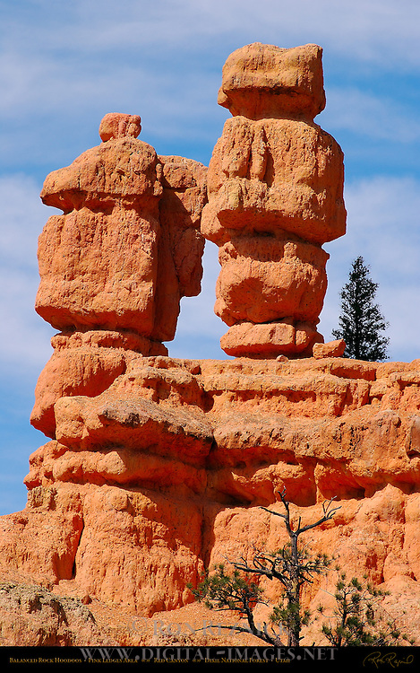 Balanced Rock Hoodoos, Pink Ledges Area, Red Canyon, Dixie National Forest, Utah