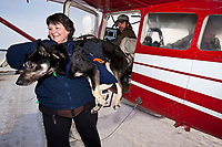 Volunteer dog helper Sandy Vernier helps take scratched musher John Stewart dogs out of Idiitarod airforce pilot Wes Erb's plane in Nome during the 2010 Iditarod