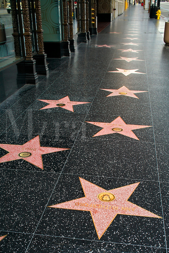 Stars on the Hollywood Walk of Fame, Hollywood Boulevard, Hollywood, Los Angeles, California