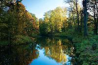Autumn colours and the White Cart Water, Linn Park, Glasgow
