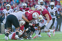 STANFORD, CA - SEPTEMBER 22, 2013: Aziz Shittu during Stanford's game against Arizona State. The Cardinal defeated the Sun Devils 42-28.