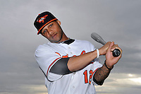 Feb 27, 2010; Tampa, FL, USA; Baltimore Orioles  infielder Robert Andino (12) during  photoday at Ed Smith Stadium. Mandatory Credit: Tomasso De Rosa