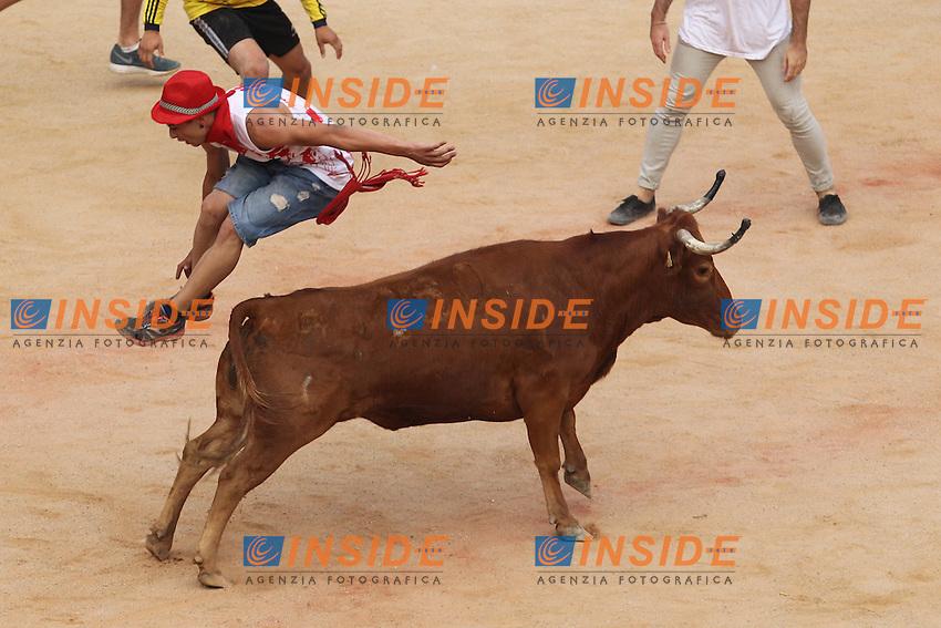 Release of heifers of San Fermin in bull square at Pamplona, after the bull runing. July 07, 2016. (Insidefoto/ALTERPHOTOS/Rodrigo Jimenez <br /> San Firmino Corsa dei Tori