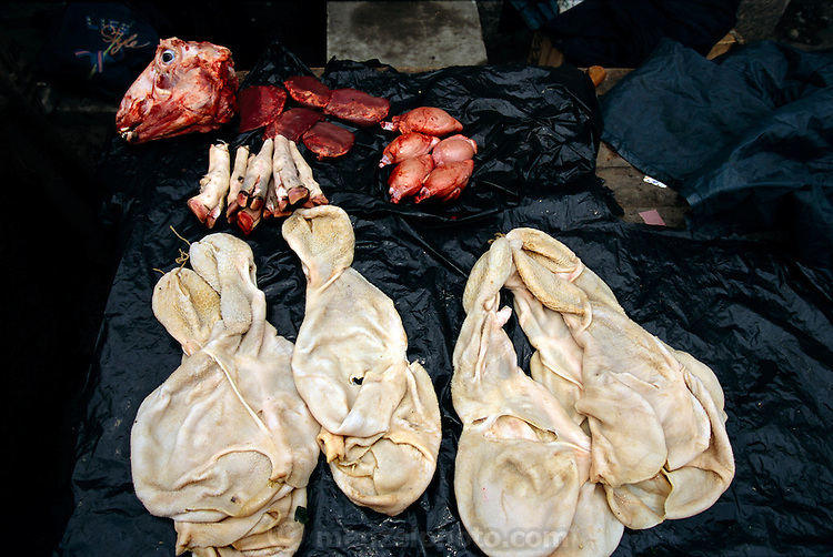 In a Turkish market, near the Golden Horn, a butcher displays cow stomachs, hearts, livers, feet, and a head. Hungry Planet: What the World Eats (p. 257). This image is featured alongside the Çelik family images in Hungry Planet: What the World Eats.