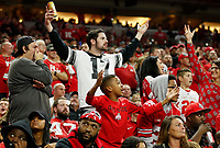Fans react after a fumble recovery by Ohio State was overturned during the third quarter of the Big Ten Conference Football Championship between the Ohio State Buckeyes and the Northwestern Wildcats on Saturday, December 1, 2018 at Lucas Oil Stadium in Indianapolis, Indiana. [Joshua A. Bickel/Dispatch]