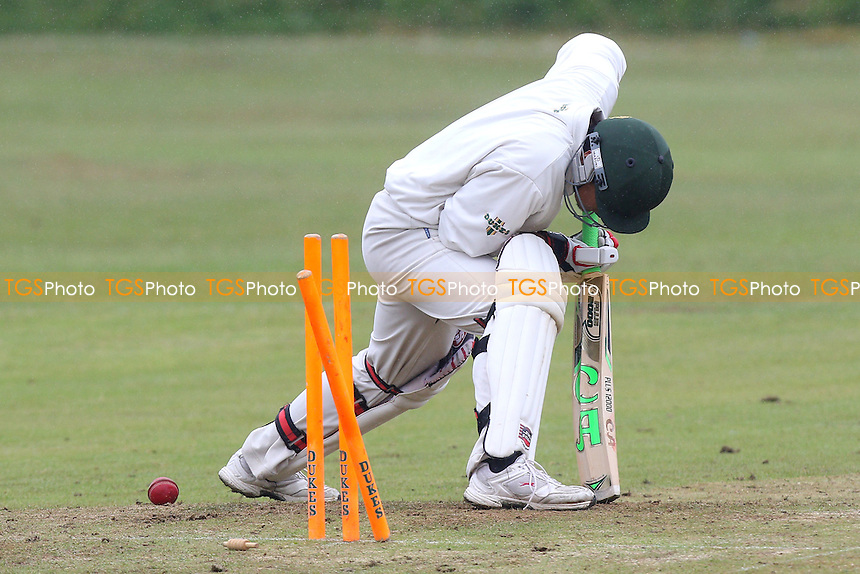 Noak Hill Taverners CC (batting) vs Terling CC - Mid-Essex Cricket League at Church Lane - 20/06/15 - MANDATORY CREDIT: Gavin Ellis/TGSPHOTO - Self billing applies where appropriate - contact@tgsphoto.co.uk - NO UNPAID USE