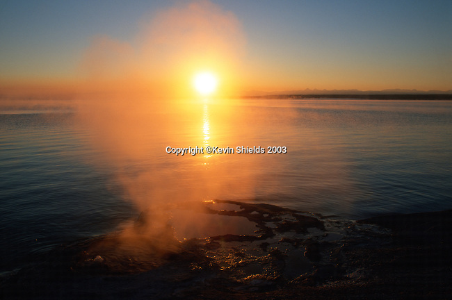 Steam rising from Lakeshore Geyser at dawn, Yellowstone National Park, Wyoming, USA