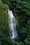 Trafalgar falls  de Morne Trois Pitonsnational park
