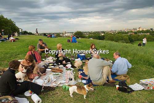 Primrose Hill. Middle aged Londoners at a dog lovers summers evening alfresco picnic.  London UK 2008